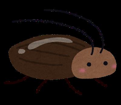 ゴキブリ退治もお任せ下さい!
