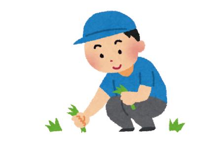 草むしりは夏が来る前にしておくのがオススメ!
