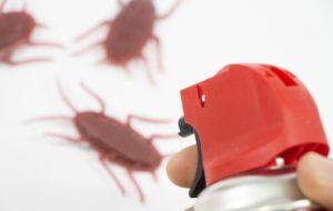 ゴキブリの駆除