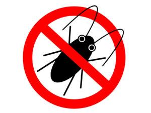 マンションのゴキブリ対策のコツを解説!どこから侵入?高層階でもいる?