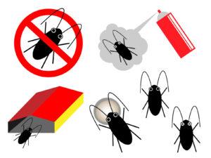 ゴキブリ駆除を業者に任せる意味はある?